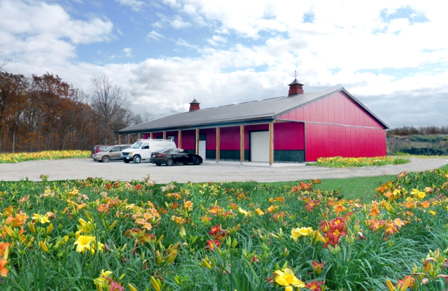 The Dynamic Daylily Barn